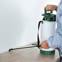 Pre-Purchase Pest Inspection Inglewood